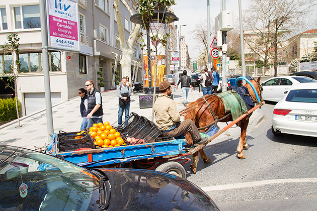 Horse Tour istanbul